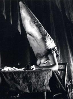 Affiche MALDOROR ET LA FEMELLE REQUIN