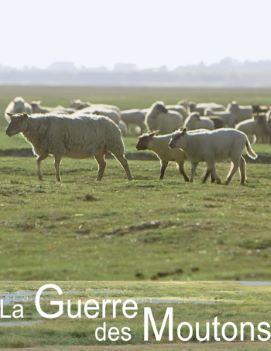 Affiche La guerre des moutons